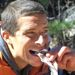 Bear Grylls Discovery Channel on Netflix